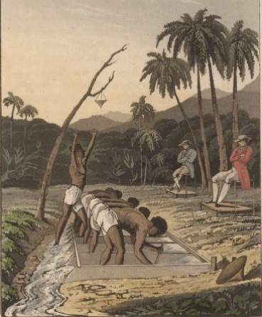 Gold Discovered | Brazil: Five Centuries of Change - photo #35