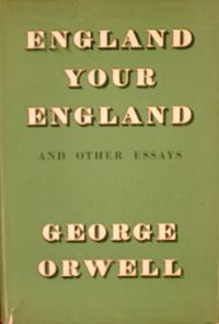 1984 book essay reflect